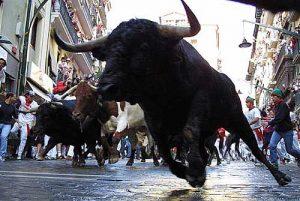 Run the Bulls