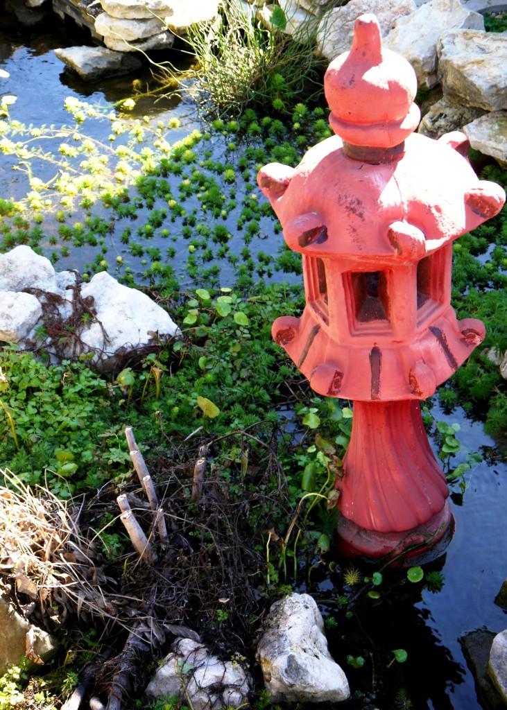 Koi Pond, Oakland Museum