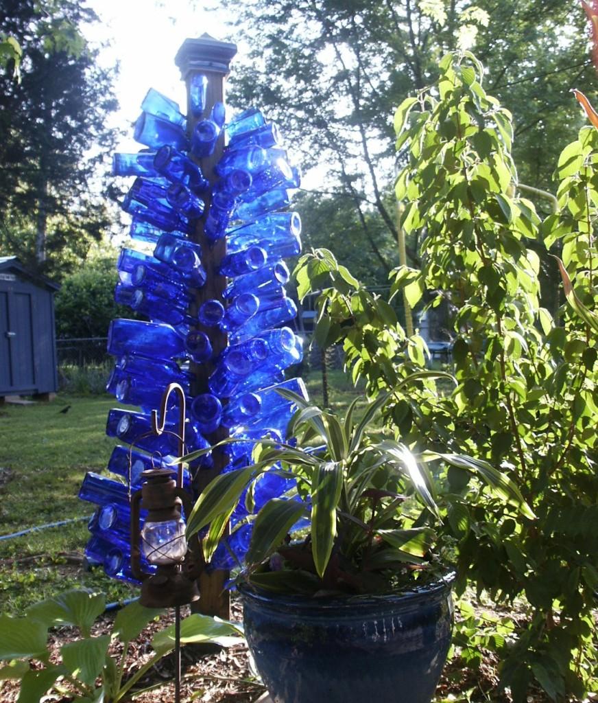 Bluebottle In Sunshine